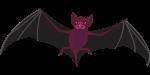 bat-1143405_960_720